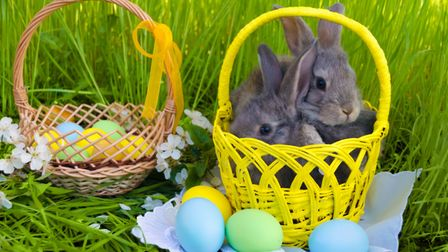 Don't put all your Easter activities in one basket this weekend, there's is plenty going on around t