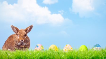 Get all your Easter events lined up in a row this weekend. Picture: Getty