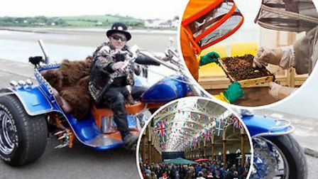 Things to do in North Devon this bank holiday weekend