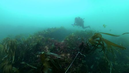 Diver surveying a possible gun casement on the wreck of HMS Montagu. Picture: Wessex Archaeology