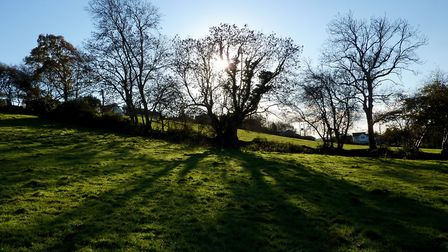 Mannings Pit at Pilton. Picture: Martin Haddrill.