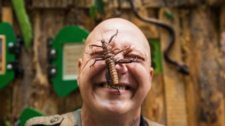 Get up close with bugs at Quince Honey Farm! Picture: WR Photography