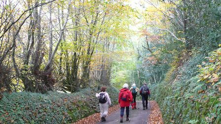 A walk at Bratton Fleming is on the North Devon Ramblers Festival of Winter Walks programme. Picture