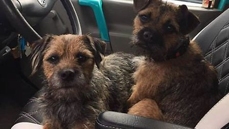 Amy and Archie have been missing from the Codden Hill area since Wednesday, March 13.