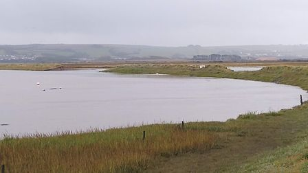 The outer bank at Horsey Island on Braunton Marsh. Picture: Brad Bunyard