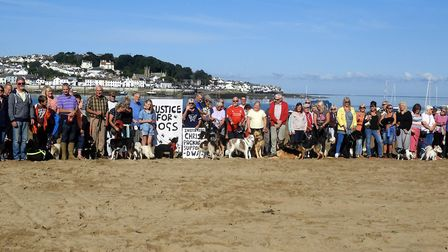 Dogs and their owners protested loudly, with demonstrations on Instow beach against the restrictions