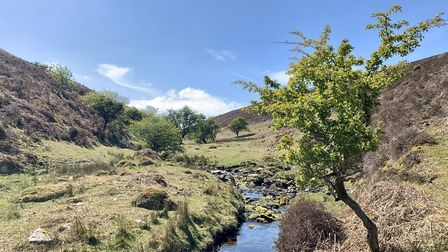 The 'waterslide' as referenced in the novel, Lorna Doone. Picture: Fiona Hailstone