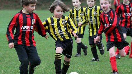 West Hill Wasps U8's played Heavitree on Saturday, January 4. Picture by Alex Walton. Ref shsp 1236-