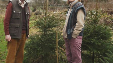 Stephen and Stella Huyshe-Shires by their Christmas trees and the telegraph pole they think was stru