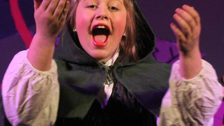 The Ottery Community Theatre and their latest pantomime, Robin Hoodie. Tamsin Harvey played as Robin