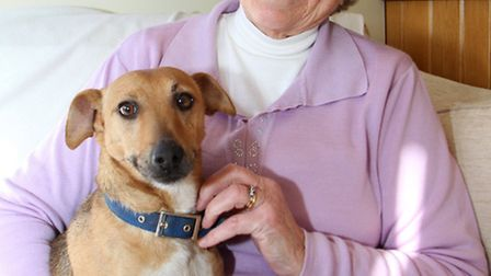 Local dog owner, June Barber, had to call the emergency services out when her dog Rosie disappeared
