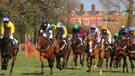 Point to Point races at Fluxton. Picture by Alex Walton. Ref shsp 5091-10-12AW. To order your copy o