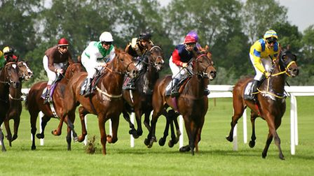 Horse Racing - generic picture