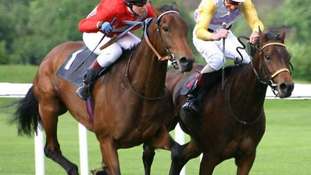 Horse Racing generic picture