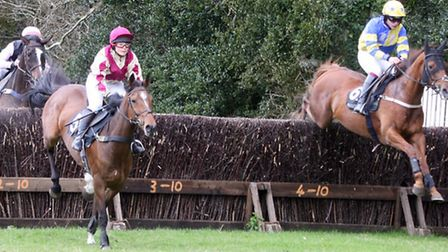 The opening race at Stafford Cross point to point. Photo by Terry Ife ref mhsp 1542-18-13TI To order