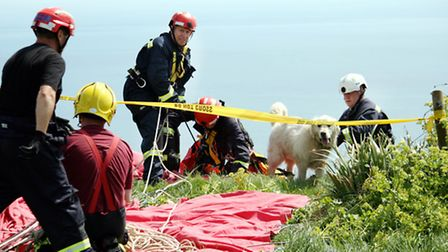 A specialist team were called to Weston Mouth to recover the dog