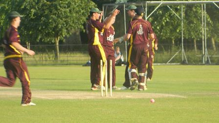 Sidmouth celebrate a wicket falling