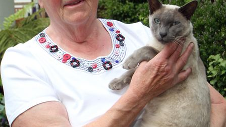 Sidmouth resident Veronica Wood with her cat Branson. Picture by Alex Walton. Ref shs 3393-23-13AW