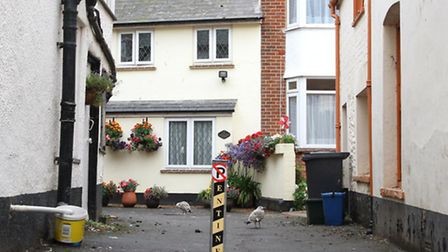 Ebdons Court, Sidmouth. Photo by Simon Horn. Ref shs 6571-33-13SH To order your copy of this photogr