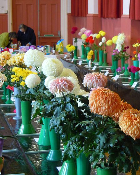 Exhibits at the Ottery Gardening Club's 2013 autumn show