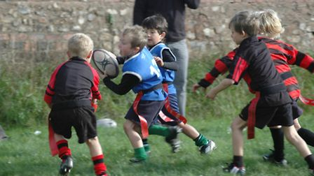 Sidmouth Under7s rugby action