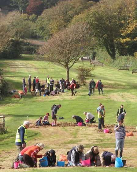Daffodil bulb planting at Peak Hill. Picture by Alex Walton. Ref shs 6250-44-13AW. To order your cop
