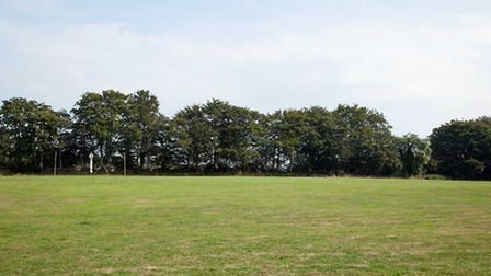 This land on Slacombe Hill has been earmarked as the new FolkWeek campsite