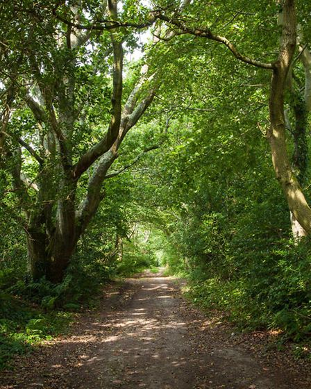 A bridleway that links the sites