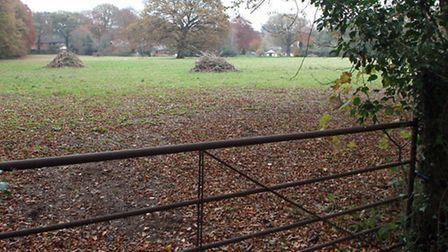The field off Higher Broad Oak Road. Picture by Alex Walton. Ref sho 9703-48-13AW