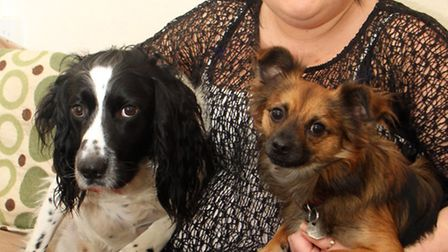 Christine Mullis from Sidburym with her dogs Bailey and Dobby. Christine recently rescued Bailey fro