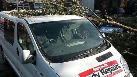 The van's roof was bent out of shape on contact with the tree. Photo by Mike and Zoe Mcdonald.