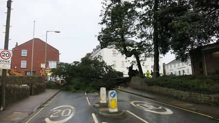 The western approach to Axminster town centre blocked by a fallen sequoia tree. Photo by Chris Carso