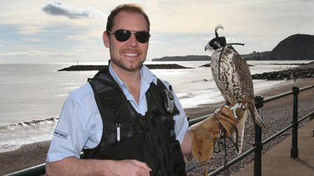 Jonathan Marshall from Raptorforce is pictured on the Sidmouth seafront this week with Pearl, a trib