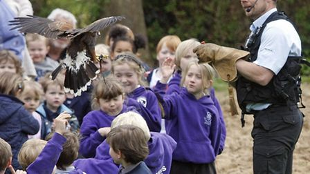 Falconer Jonathan Marshall St Johns school in Sidmouth. Photo by Terry Ife. Ref shs 4570-18-14TI To