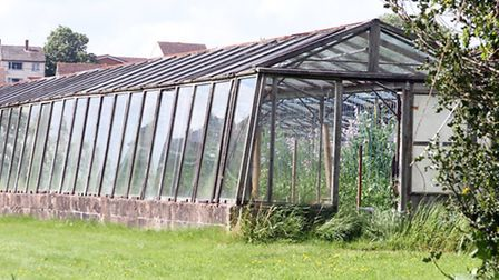 Plans have been submitted for 45 homes on the site of Gerway Nurseries. Picture by Alex Walton. Ref