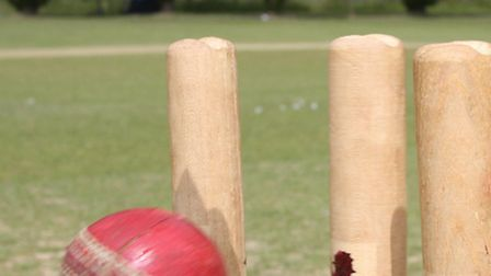 ndg-Cricket-stumps1