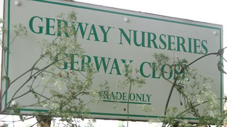 Gerway Nurseries. Picture by Alex Walton. Ref sho 2623-21-14AW