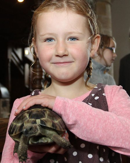 Five year old Grace Oxley with her tortoise Barney who is also five years old at the Sidbury Tingle