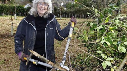 Brenda Levings at the wildlife hedge planting event. Ref shs 0513-02-15TI. Picture: Terry Ife