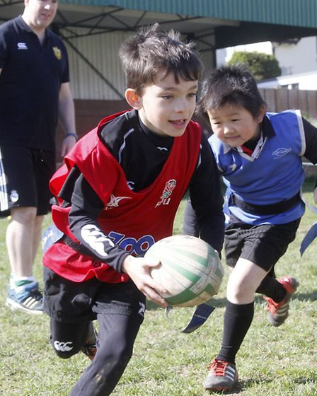 Tag rugby at the world cup warm up event at Sidmouth rugby club. Ref shs 4215-13-15TI. Picture: Terr
