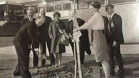 Linda Sherrard (nee Wyatt) and Derek Cody (both on the right) planted a tree 50 years ago to mark th