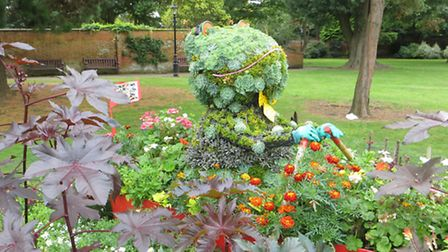 The frog display in Blackmore Gardens