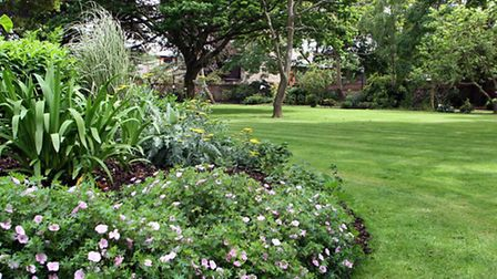 Blackmore Gardens in summer time. Picture by Alex Walton. Ref shs 4758-24-14AW. To order your copy o