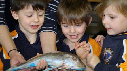 Pupils from St John's International School had a go at painting with fish during their Creativity on