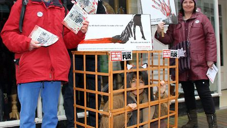 Mark Gold, Martin Fox, Jan Strassen and Sharon Howe of Exeter Friends For Animals make a protest in