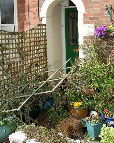 A front garden that has been destroyed by vandals in Lawn Vista. Ref shs 16-16TI 9278. Picture: Terr