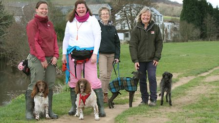 East Devon AONB held a dog walk along the river from Colyton this week. Ref mha 1714-13-15SH. Pictur