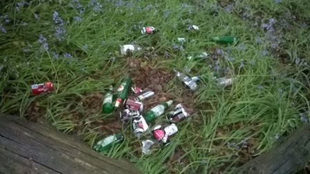 Bottles and cans found at Core Hill