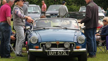 Donkey Sanctuary Car Show on Sunday. Ref shs 27-16SH 1252. Picture: Simon Horn.