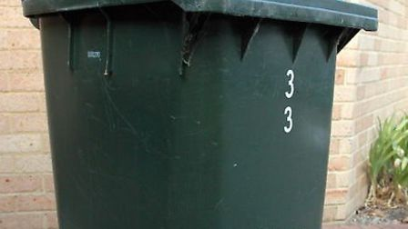 Bins will be used for garden waste if the council approves the new waste contract.